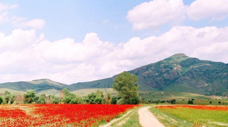 Дел од Пелагонија со доминантниот врв Веслец