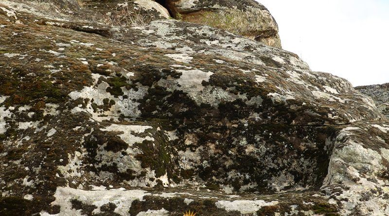 Скалесто обработени делови на северниот профил