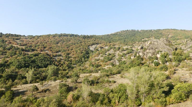 """Повисокиот дел од локалитетот """"Пештера"""" од североисток"""