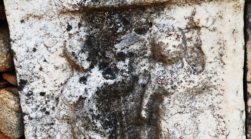Фрагмент од стела со релјеф