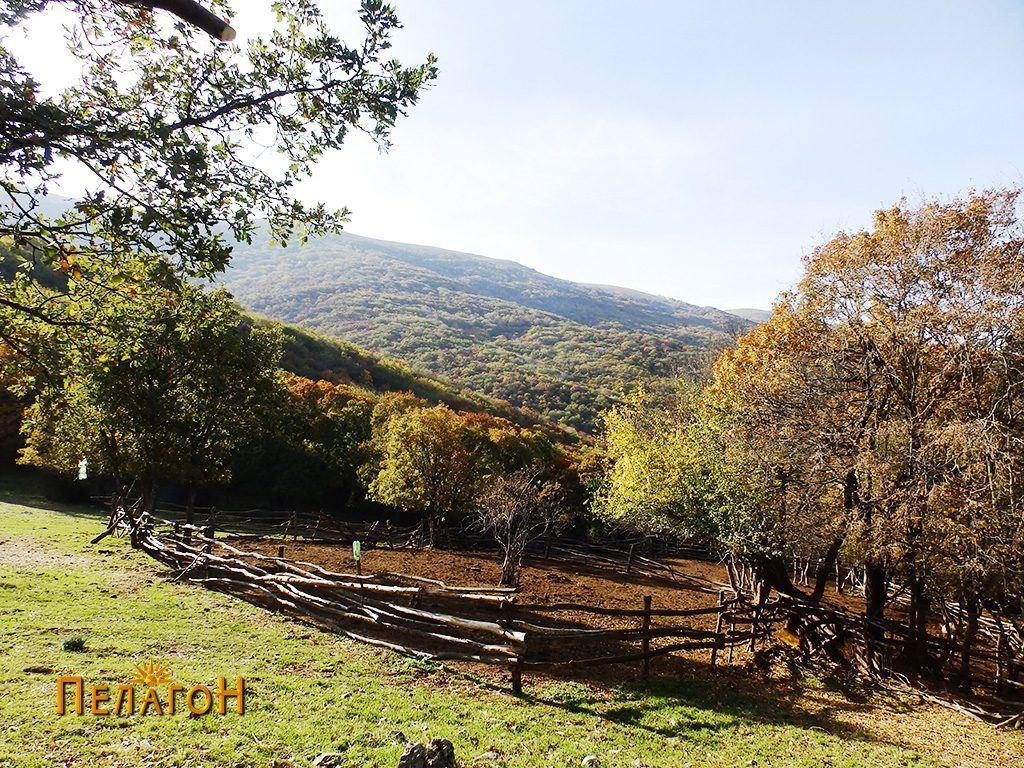 Клен - превој меѓу селата Дрен и Гудјаково
