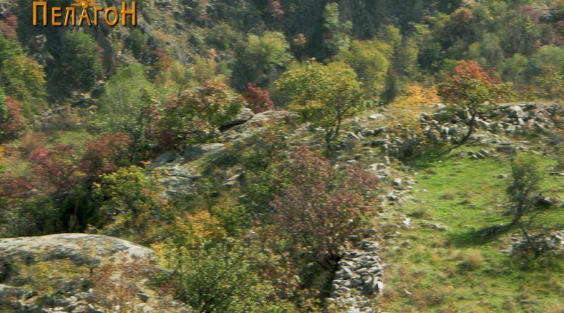 Дел од ѕидот на тврдината од источната страна