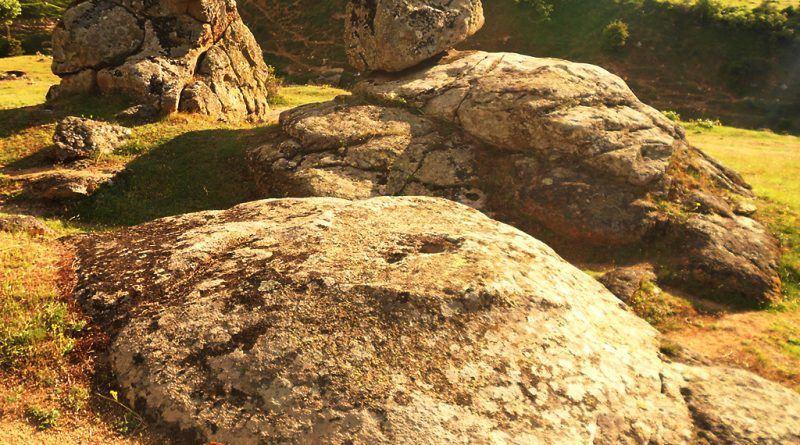 Обработена карпа во близина
