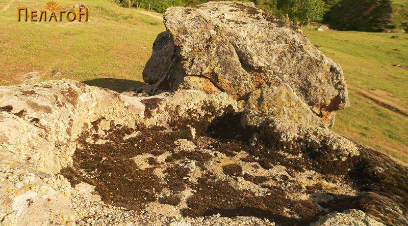 Од карпестиот амбиент во близина