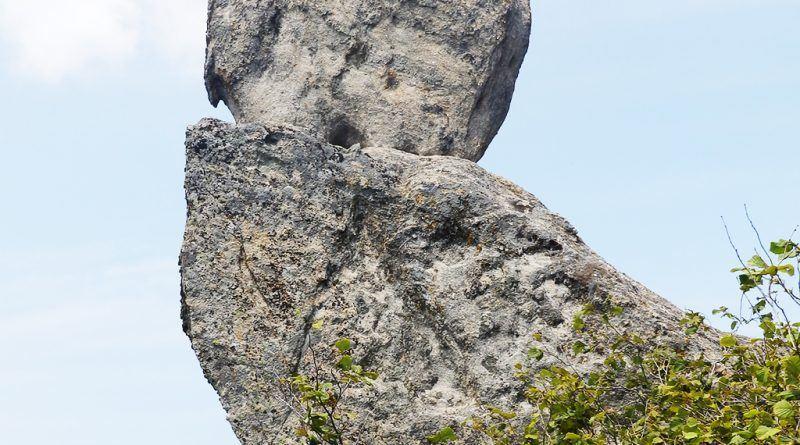 """Карпа со """"камена птица"""""""