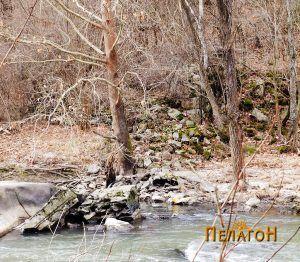 Остаток од мостот на Црна Река јужно од Чебрен 3