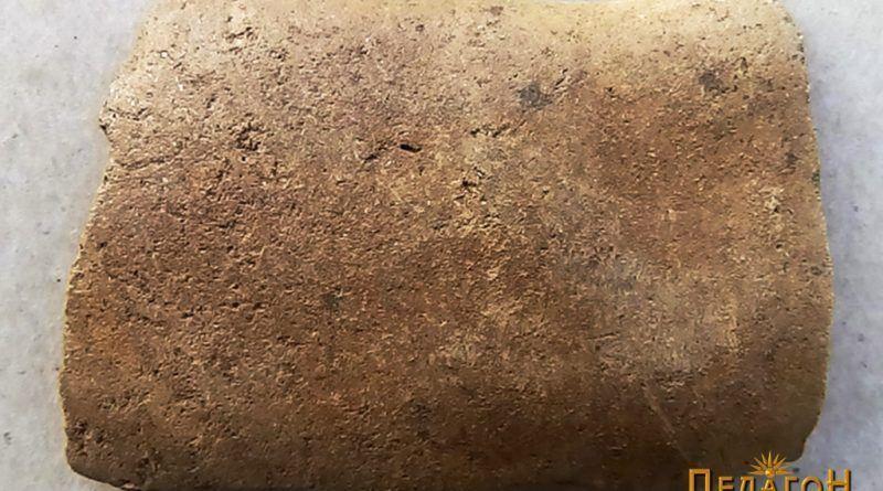 Рачка со лентеста форма