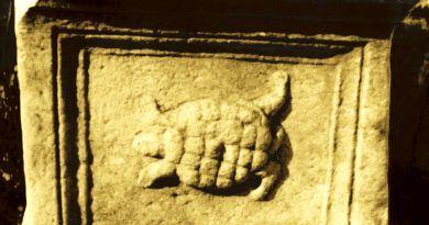 Страната од жртвеникот со претстава на желка