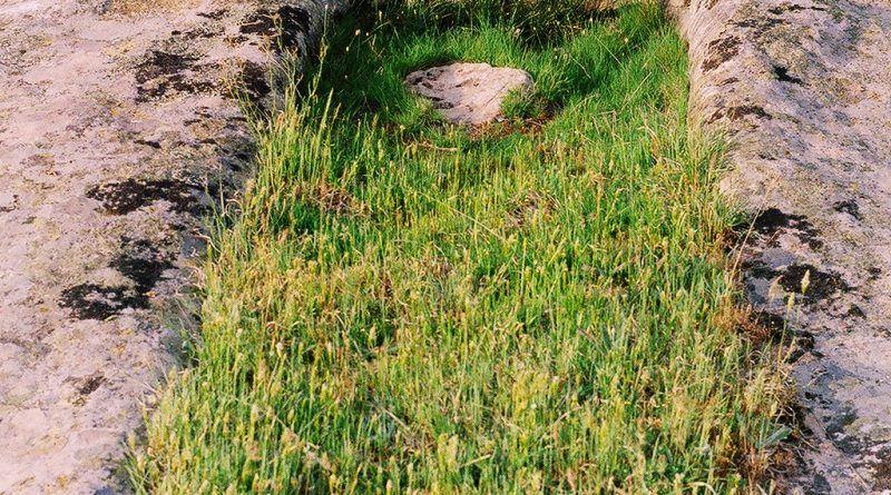 """Винарник во карпа во близина на """"Грамаѓе"""""""