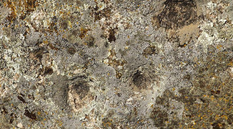 Дел од симболиката на карпата во близина - полукружна форма со кружни длабнатинки