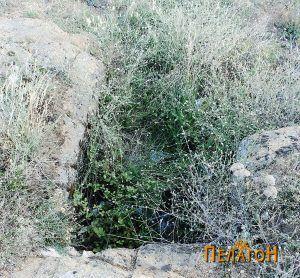 Гробница бр. 1 - дромосот