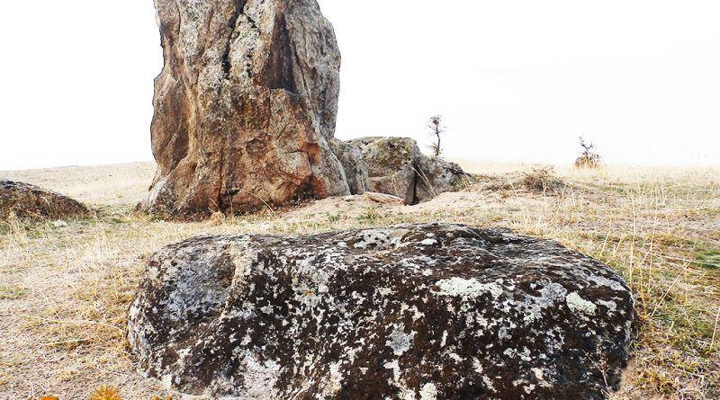 Заедно со карпата со симболика
