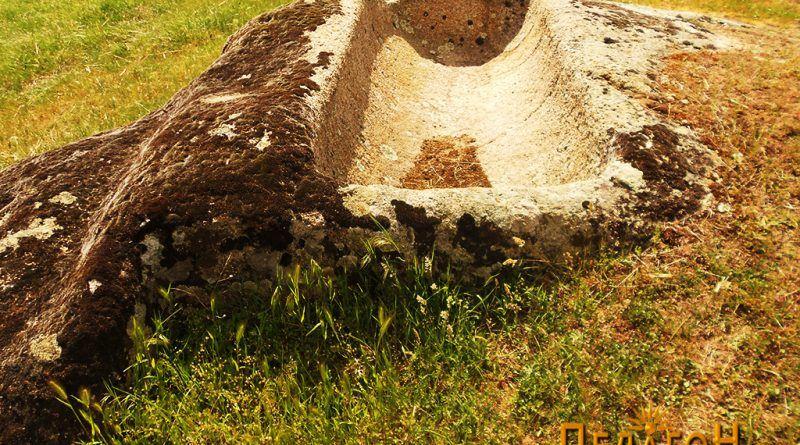 Винарник во карпа во близина 2