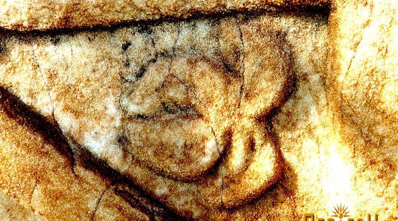 Детал од плочата со украсување - ртулец