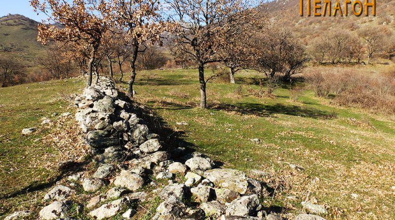 12. Голем ѕид од североисточната страна