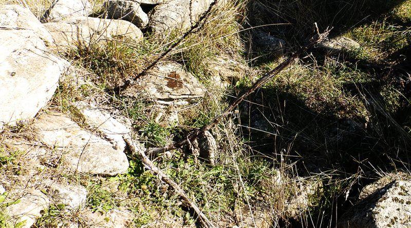 Остатоци од северниот ѕид