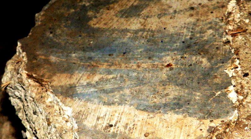 Светата маса - фрагмент од живописот на горната површина