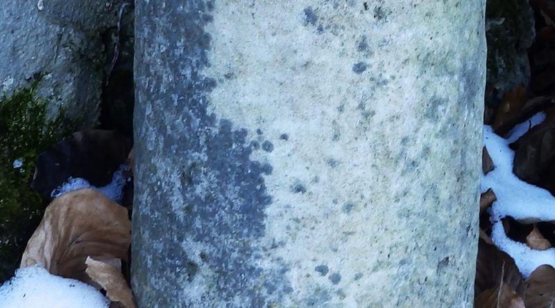 """Фрагмент од помал мермерен столб кај чешмата близу црквичката """"Св. Ѓорѓи"""" - лева страна"""