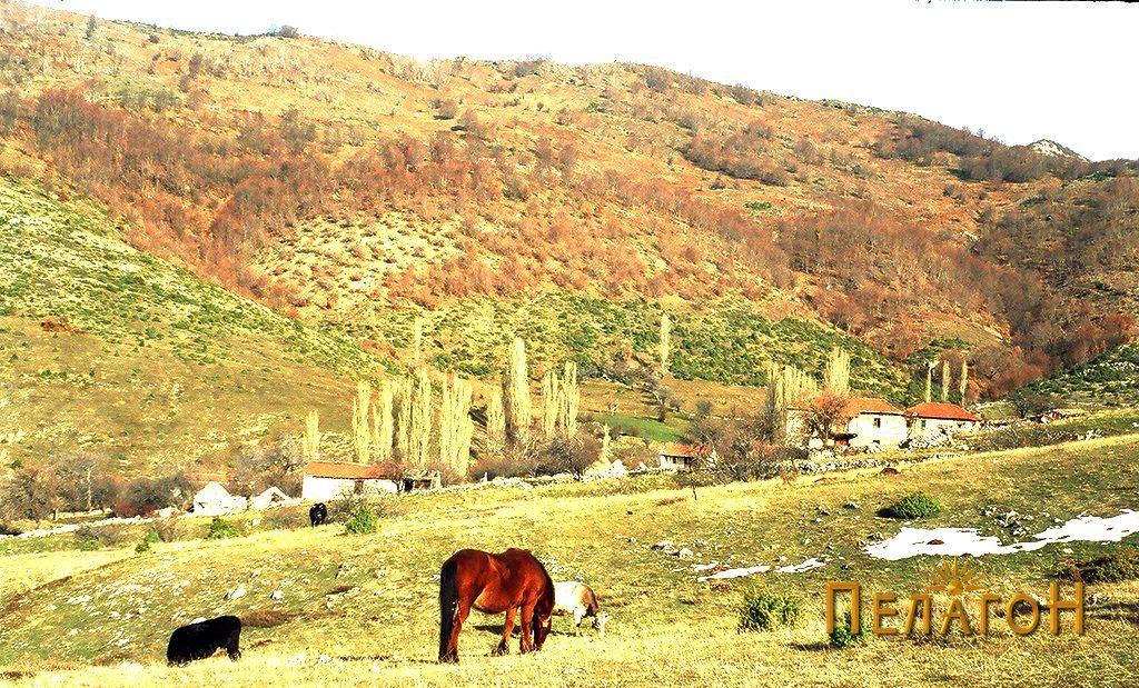 Селото Крстец