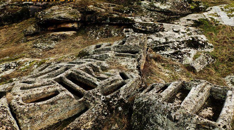 Поголем дел од гробовите на нењкрополата - птица