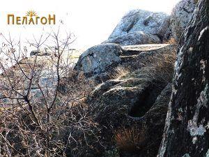 Гробови на терасесто оформена површина во близина
