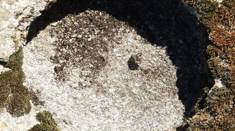 Кружна јама на карпата со симболика