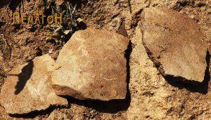 Фрагмент од керамички сад со дно