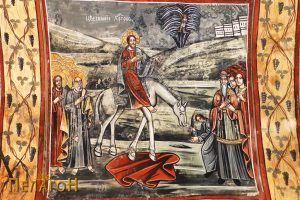 Цветоносие Христово
