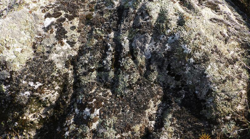 Симболика со каналести форми на западната страна нан жртвеникот