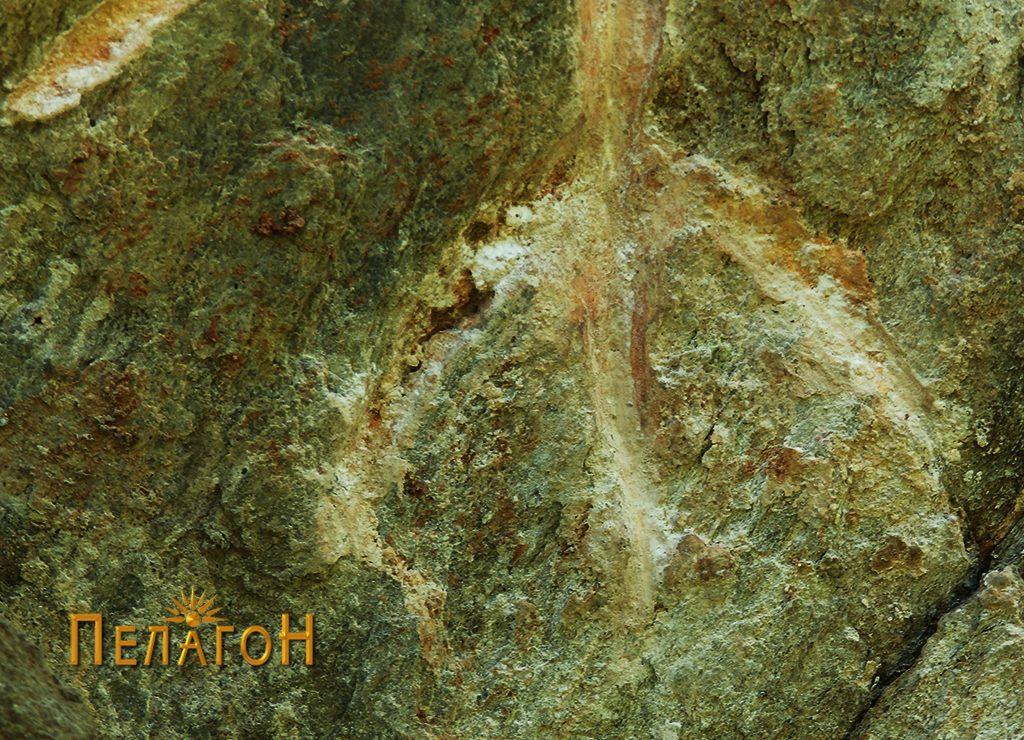 Разгранет крак во основата на еден од крстовите