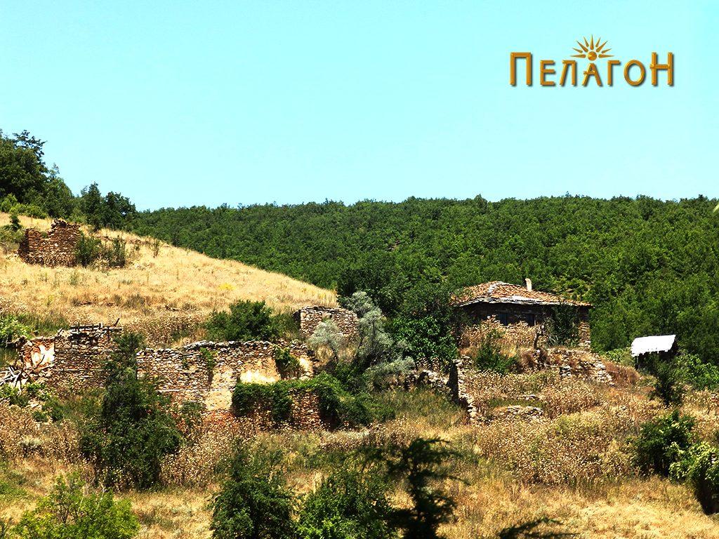 Остатоци од селото Живово