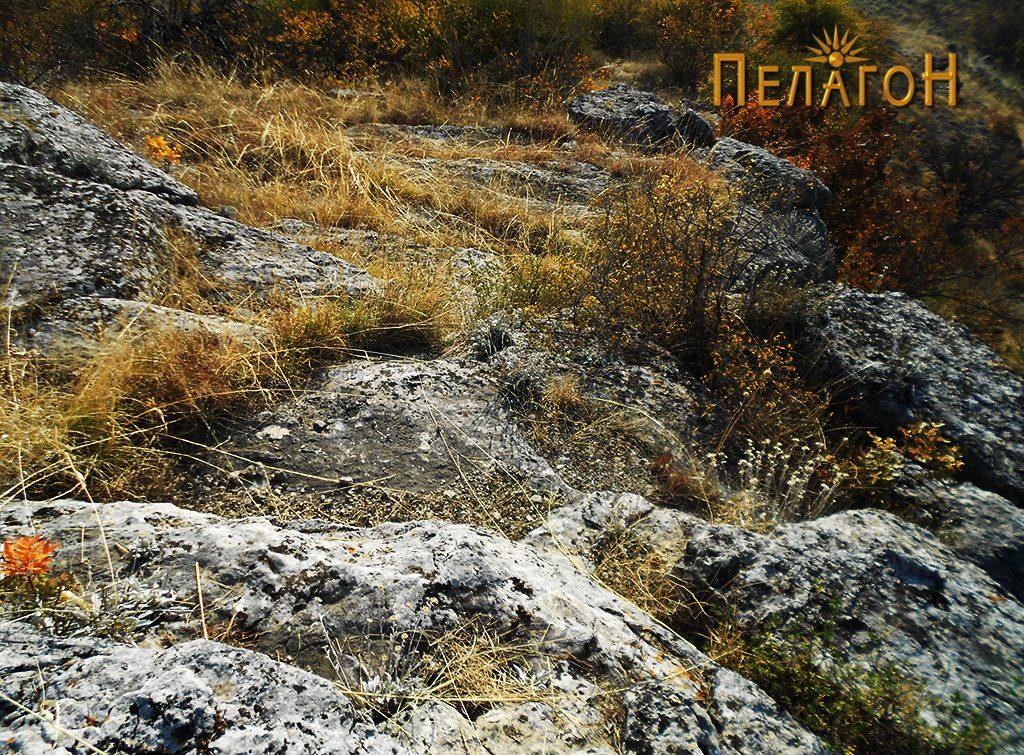 Пристапот кон врвот со рамното плато од северната страна