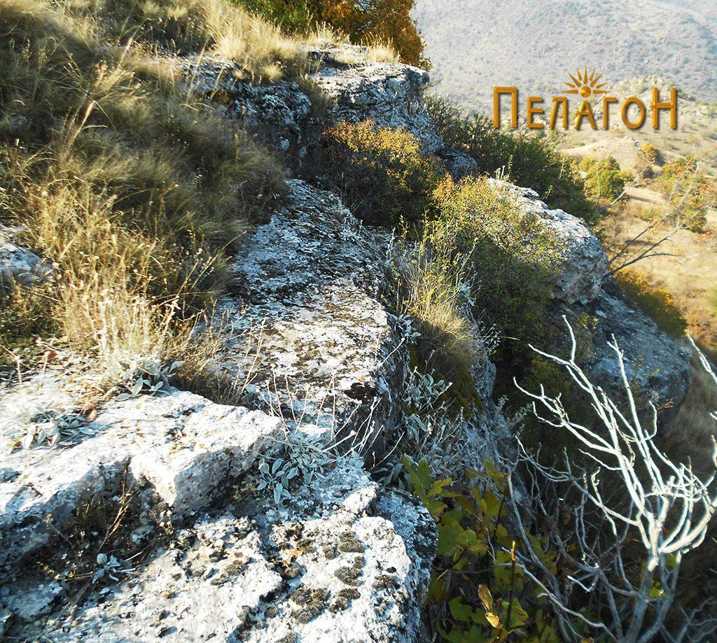 """Дел оид карпестиот раб на рамнината на врвот на """"Лаштигерот"""""""