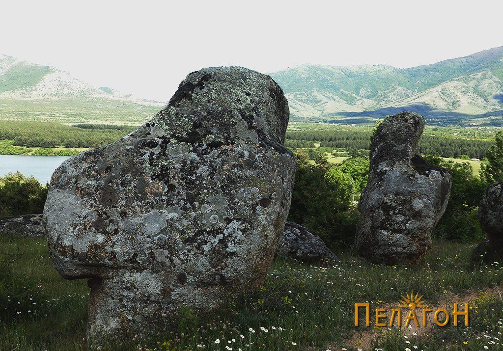Две карпи со обработени профили