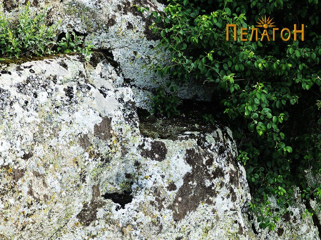 Констурктивни елементи на профил на карпа