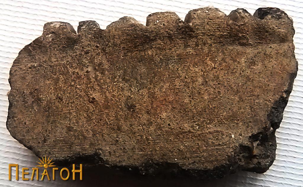 Фрагмент од керамички сад - устинка