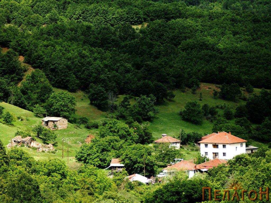 Од селото Дрен 2