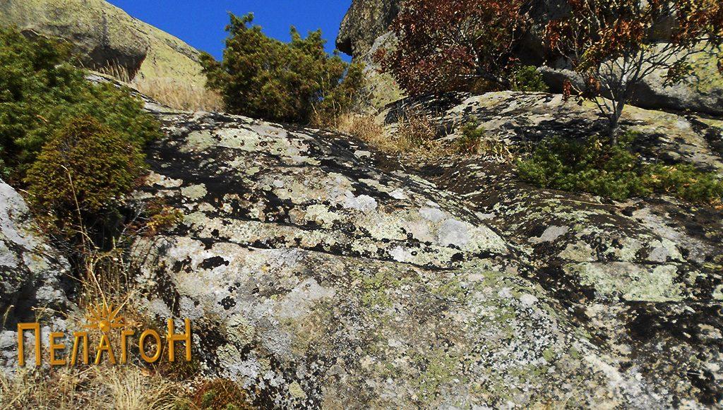 Зарежани карпи при врвот