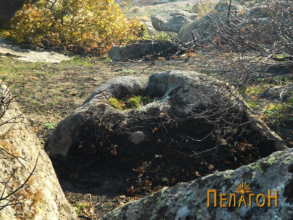 Поголем издлабен сад во помала карпа во утврдениот дел