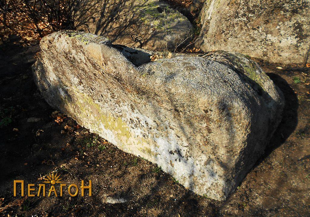 Обработена карпа на линијата на ѕидот