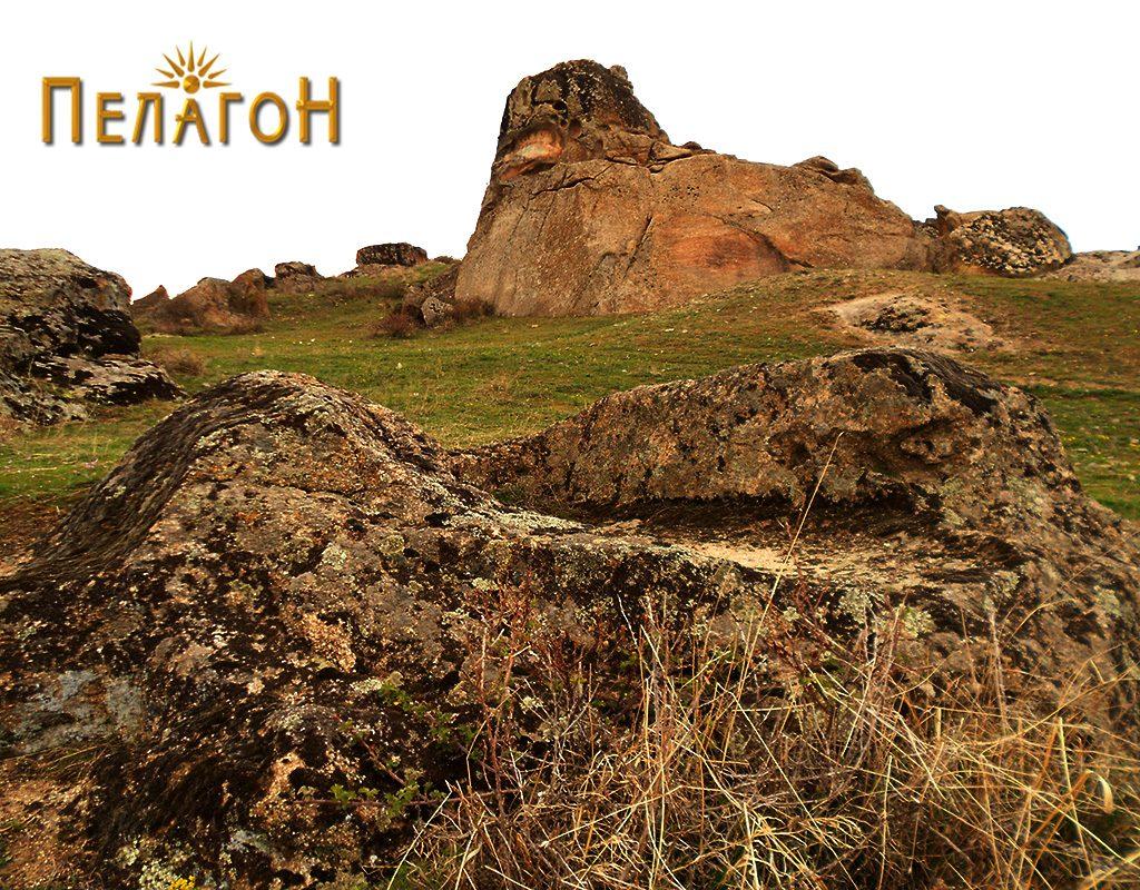 Винарник во карпа од југоисточната страна - оштететен
