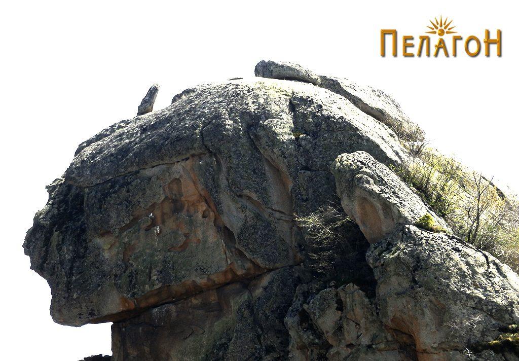"""Главата на """"Лавот"""" со """"рог"""""""