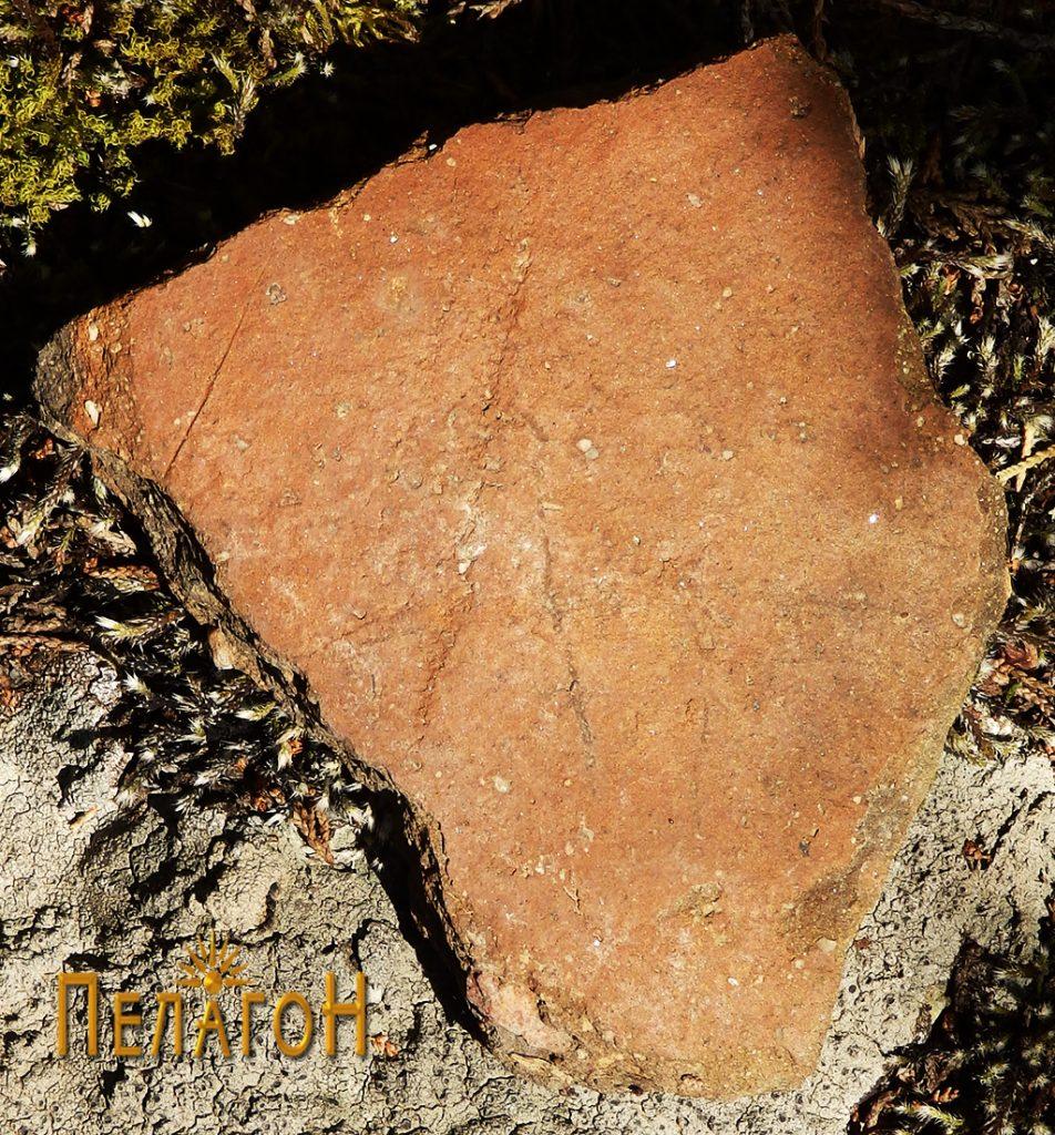 Фрагмент од тегула или питос