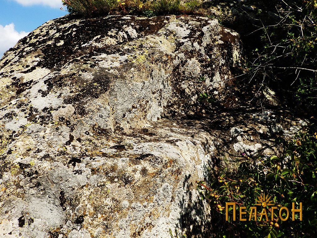 Терасеста форма на карпа при врвот