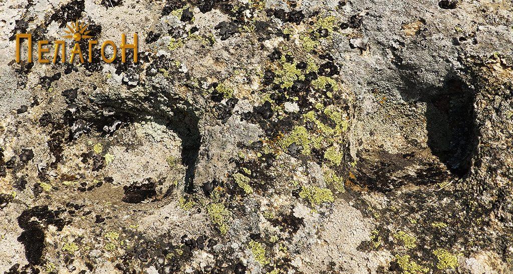 Обработени форми на профил на карпа за поставување греди од извесна градба