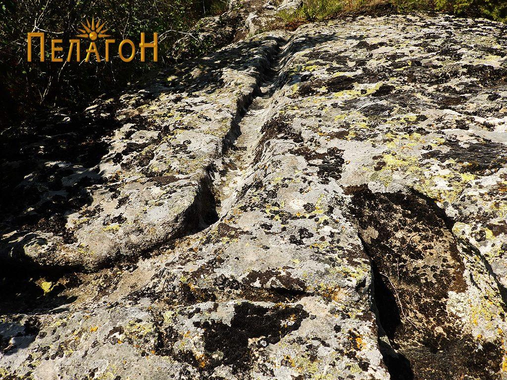 Канали по карпестата површина при врвот