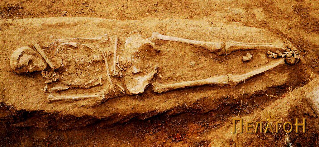 Скелет без гробна конструкција