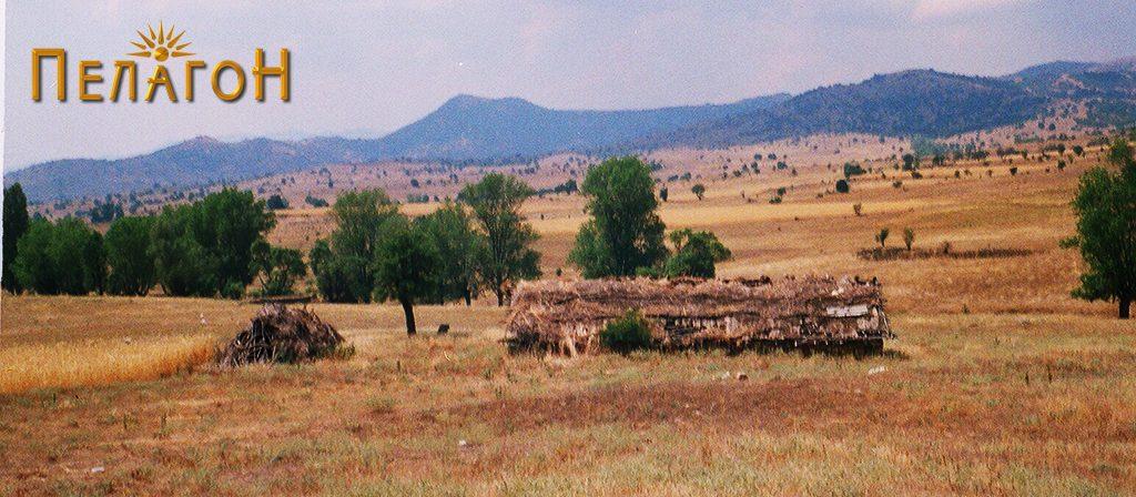 Дел од трлото на локалитетот со остатоци од стара населба 2