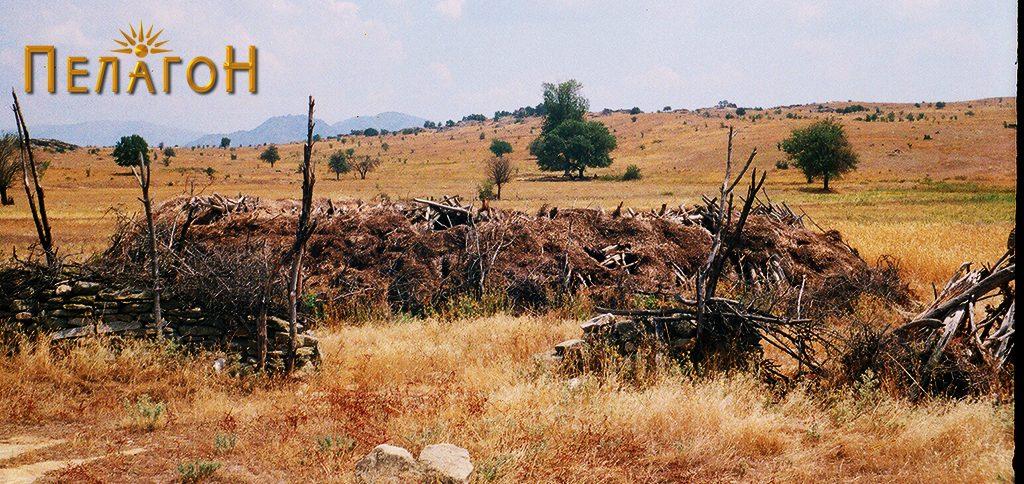 Дел од трлото на локалитетот со остатоци од стара населба
