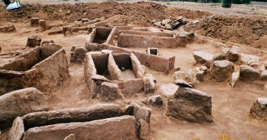 Поголем дел од тумулот со гробовите 3